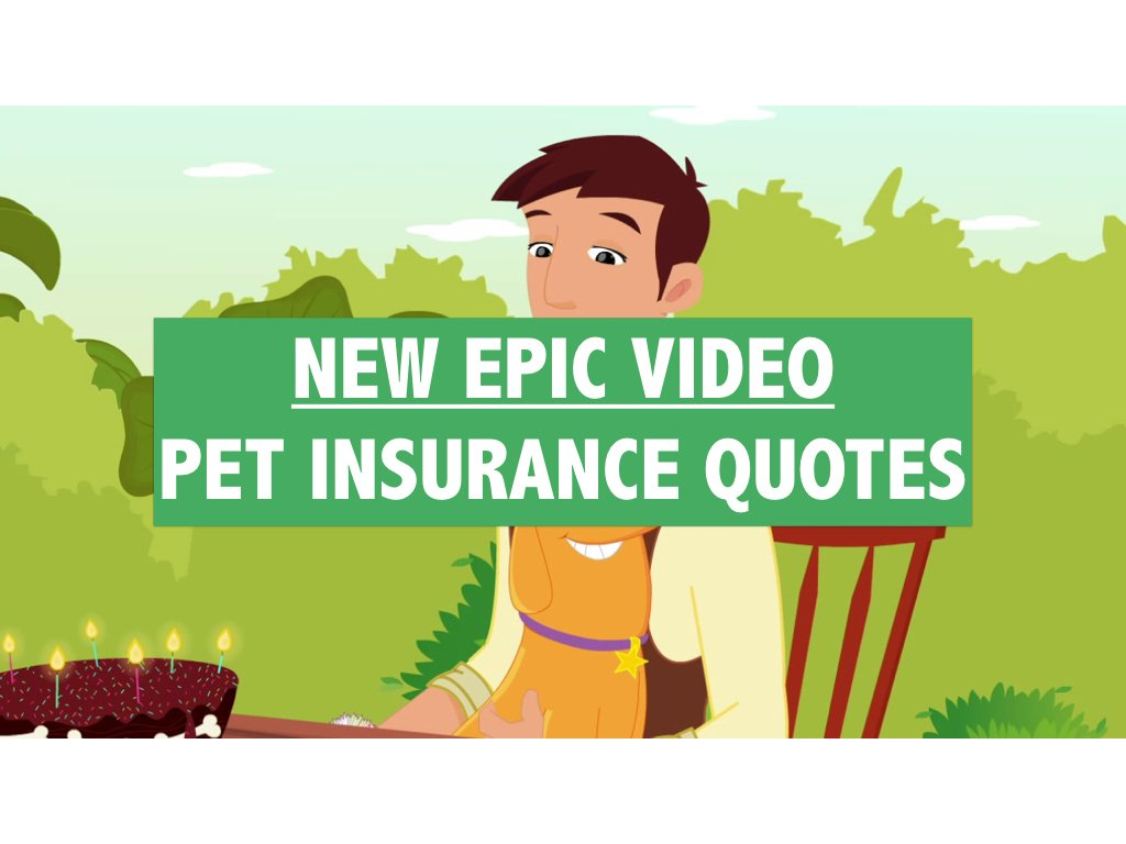 New Epic Video Pet Insurance Quotes